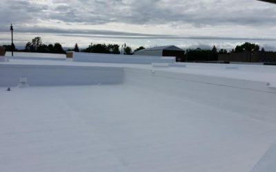 Cool Roof Coating Market by 2025