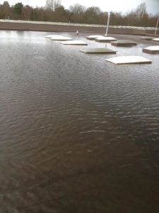 water on flat roof
